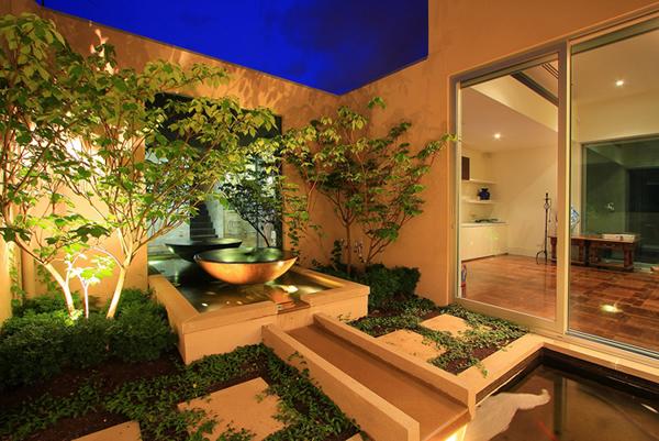 ideias jardins grandes:Plantas Para Dentro De Casa