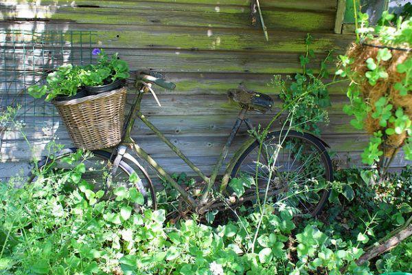 garden-old-bike