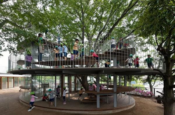 Arquitetos projetam anexo escolar em torno de antiga árvore no Japão