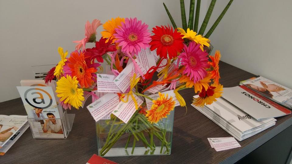 Dia da mulher especial no Plantão de Vendas - Imobiliária Wallau com Athivabrasil