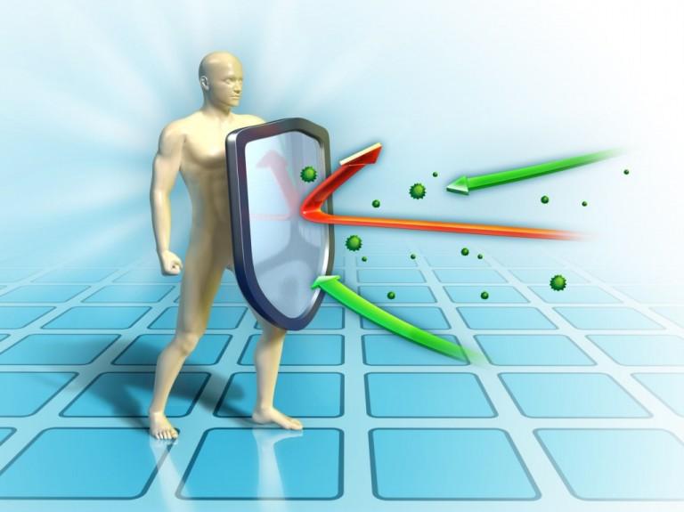 10 alimentos que fortalecem o sistema imunológico