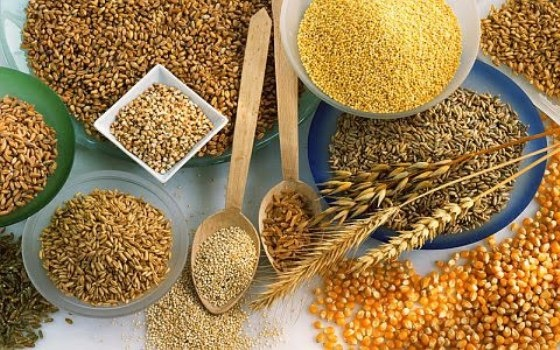 alimentos-que-ajudam-na-formação-de-colágeno