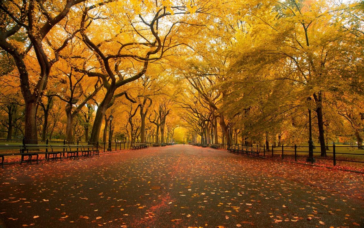 O início do Outono - Viver Bem Agora